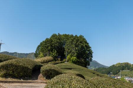 安積親王陵墓